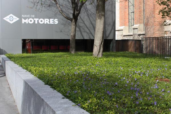 mercado de motores foto by madridcoolblog.com