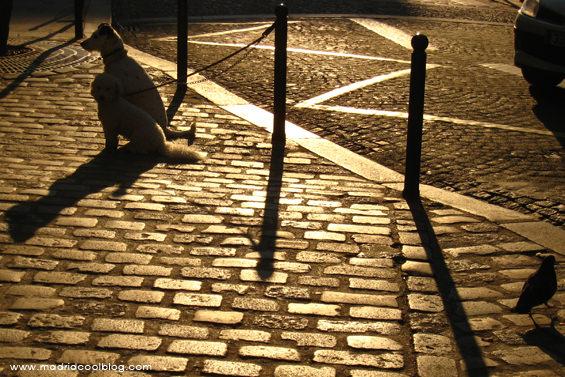 Paseo matutino por Montmartre, París. Foto de www.madridcoolblog.com