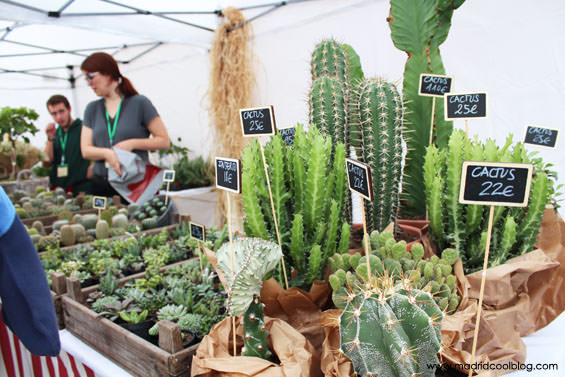 madrid, cool, blog, mercado, productores, legazpi, matadero, cactus