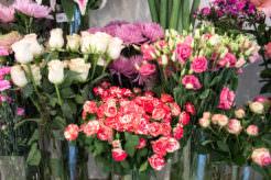 Margarita se llama mi amor. Floristería en Alonso Martínez.