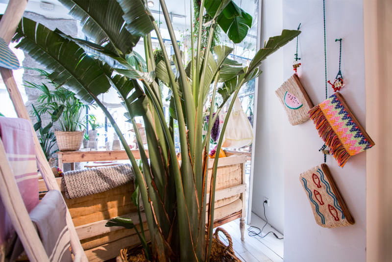 MADRID-COOL-BLOG-PINCOKO-bolsos-y-plantas