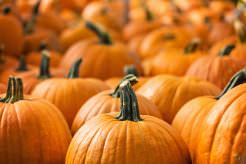 madrid-cool-blog-halloween-calabazas-02-g