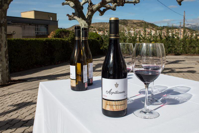 madrid-cool-blog-azpilicueta-vino-seleccion-barricas-g