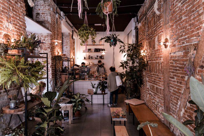 PLANTATE-CAFE-interior-02-G