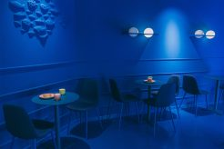LA-PECERA-GOYA-blueroom-G