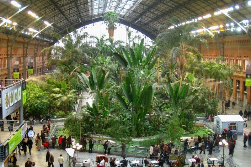 ESTACION-DE-ATOCHA-jardin-botanico-G