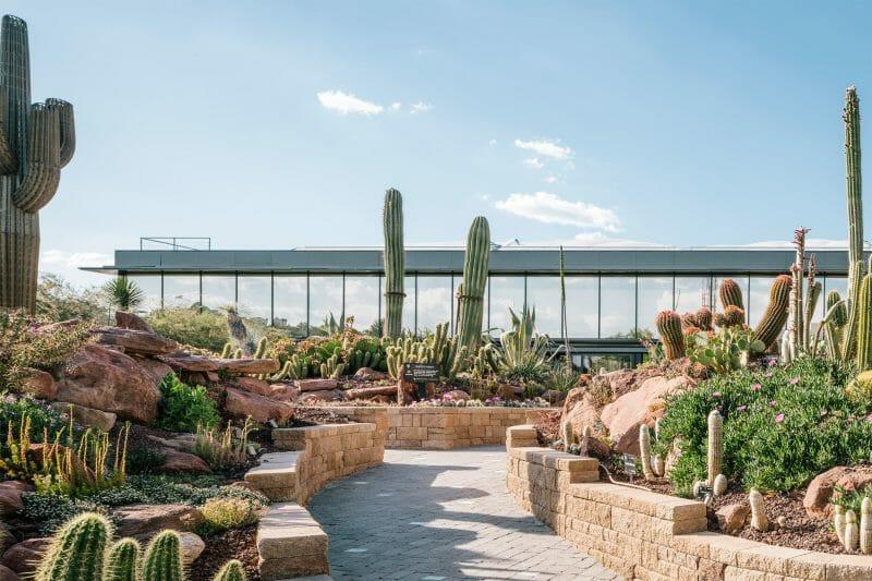 Desert City. Foto de Imagen Subliminal.